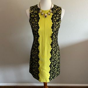 Synthia Steffe sheath mixed media lace dress